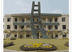 Neotia Institute of Technology  Management and Science