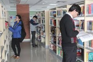 LMTSOM - Library