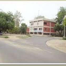 Government Arts College