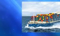 Indian Institute of Freight Forwarders