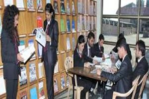 IBS - Library