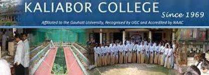 Kaliabor College