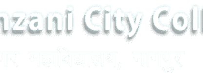 Shri Binzani City College