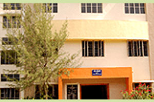 NMSSVN COLLEGE - Primary
