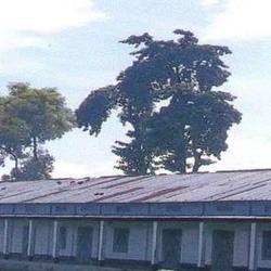 Jaleswar College