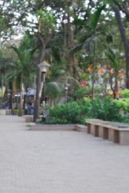 RUIA COLLEGE - Other