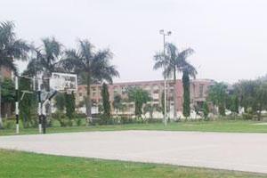 BFM - Primary