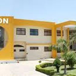 Vision School of Management