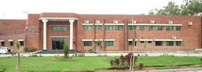 University Institute of Information Technology