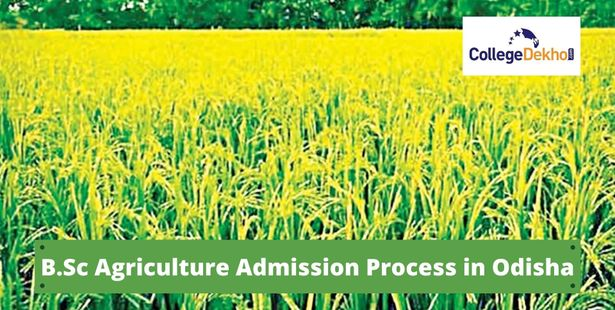 B.Sc Agriculture admission process in Odisha 2021
